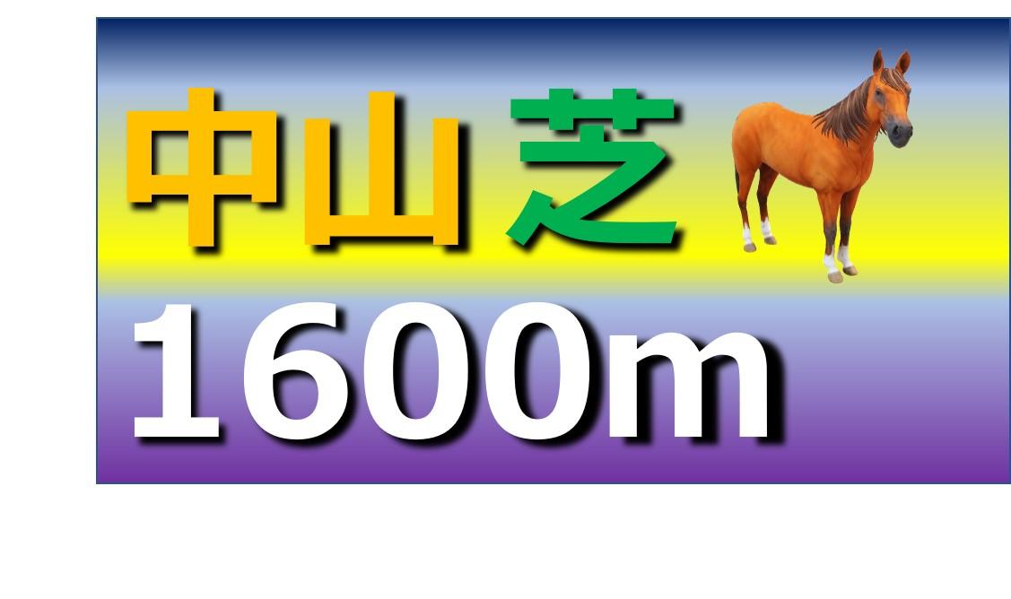 中山 芝 1600m