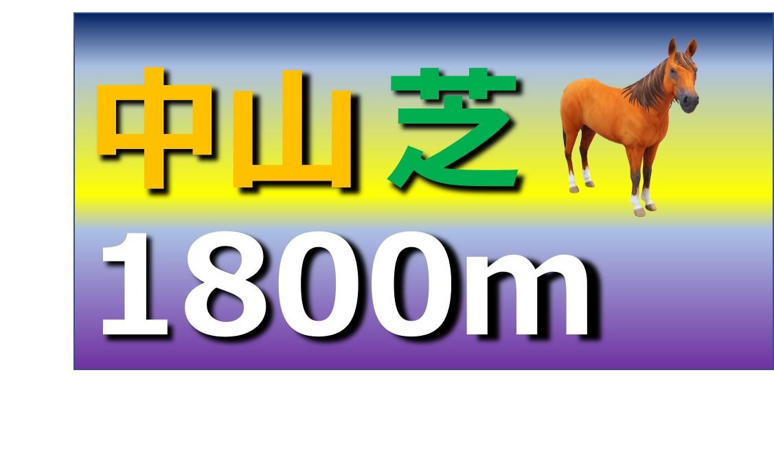 中山 芝 1800m