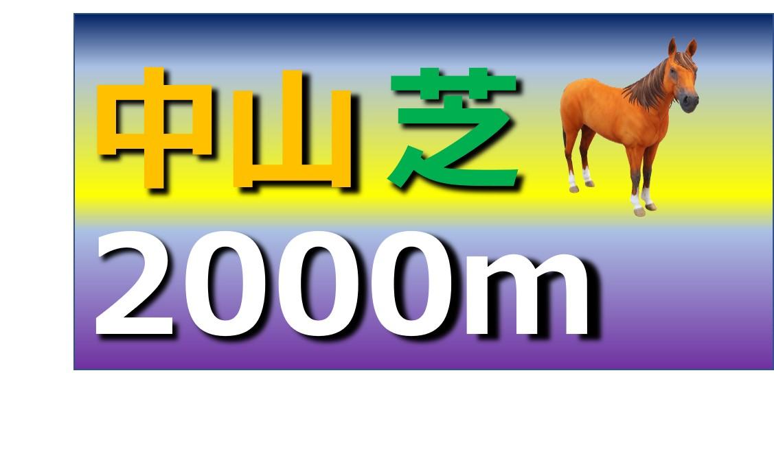 中山 芝 2000m
