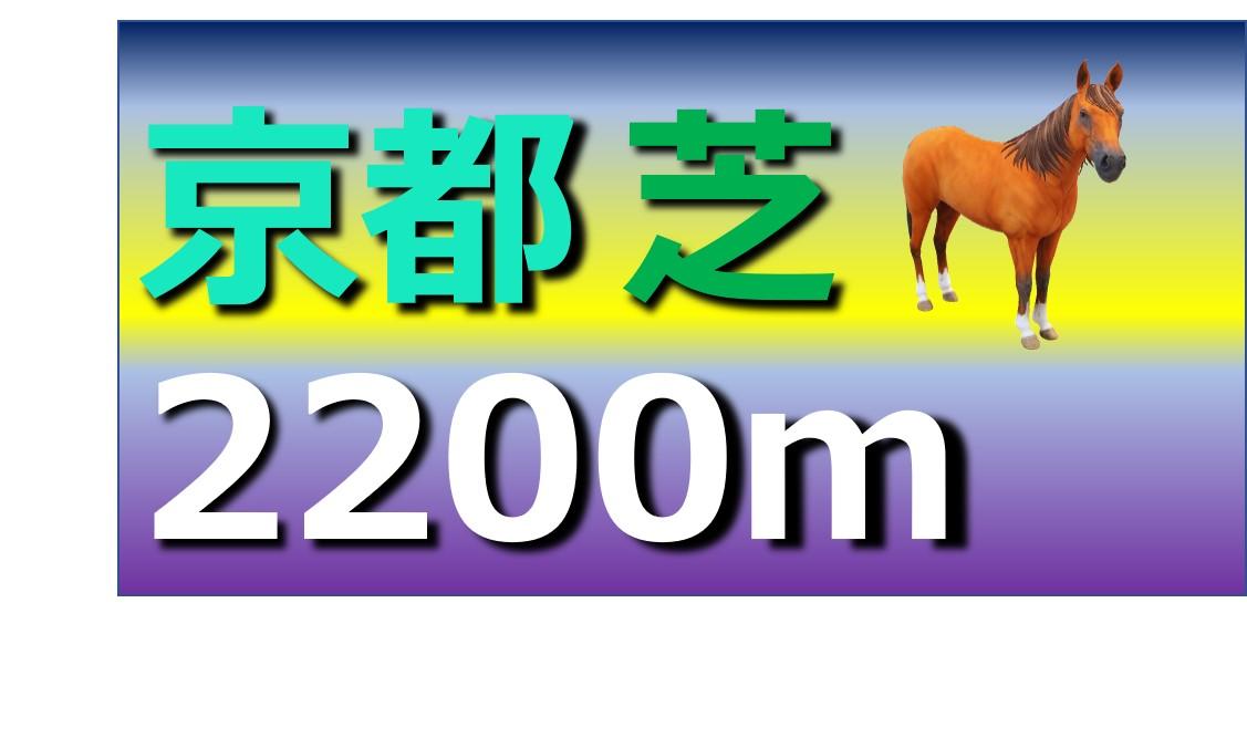 京都 芝 2200m