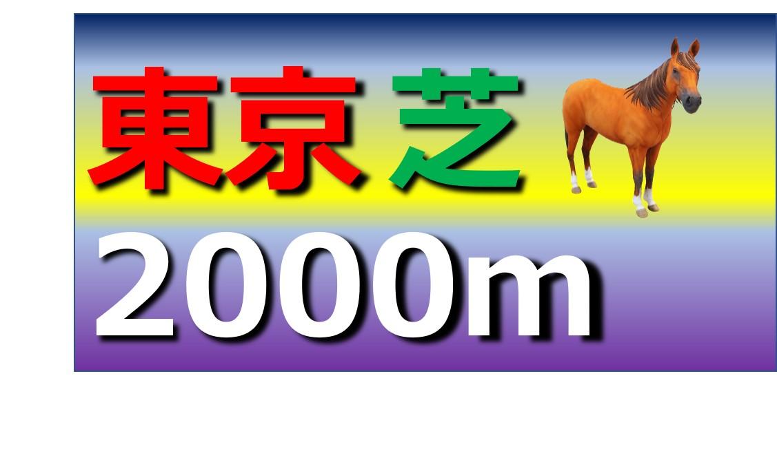東京 芝 2000m