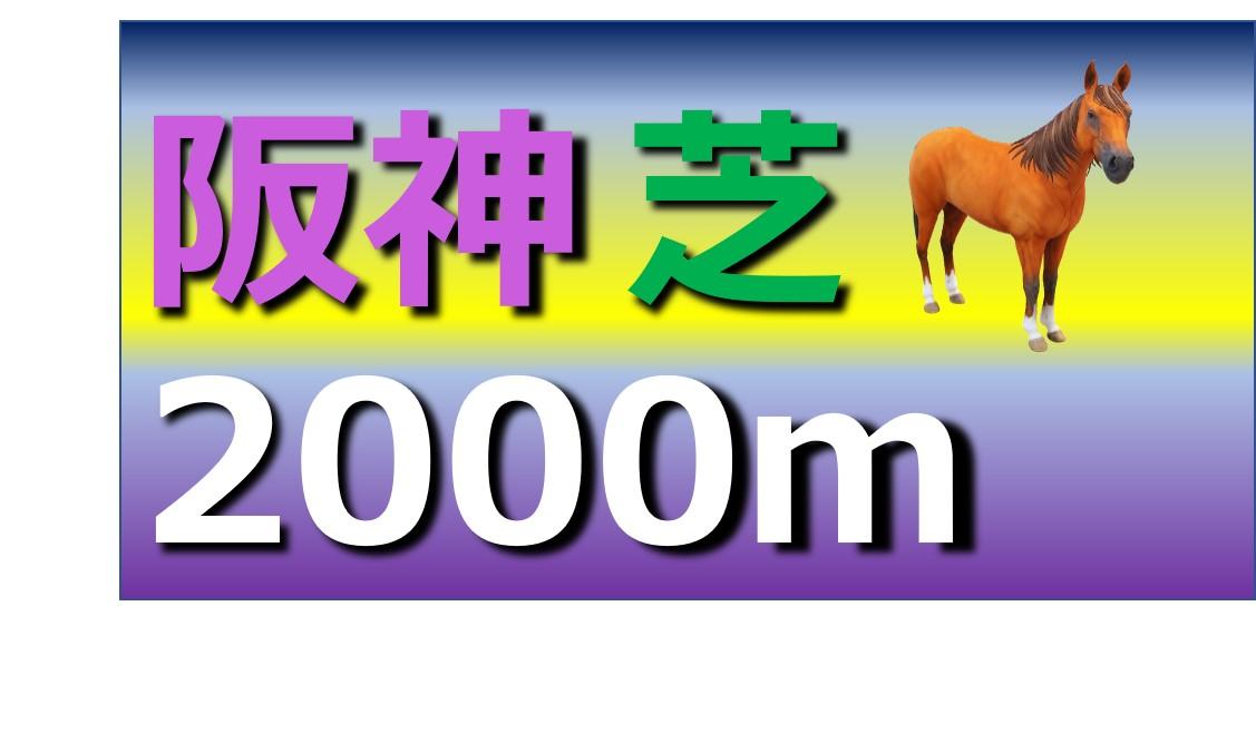 阪神 芝 2000m